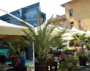 Кафе-Градина Маркони