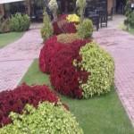Ботаническа градина, с. Тъжа, Павел баня